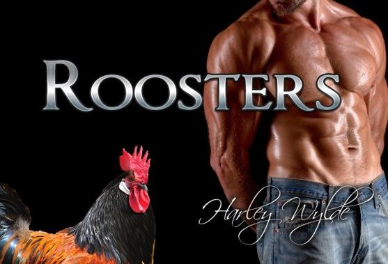 RoostersBannerHW